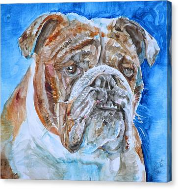 Canvas Print featuring the painting Bulldog - Watercolor Portrait.8 by Fabrizio Cassetta