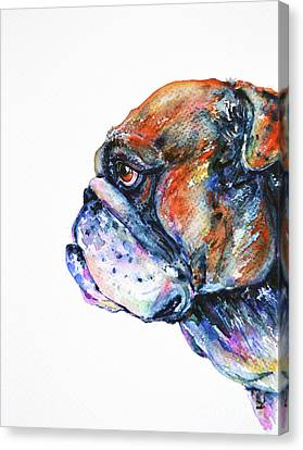 Canvas Print featuring the painting Bulldog by Zaira Dzhaubaeva