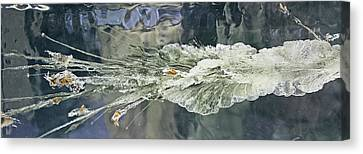 Bullet Fragmentation Abstract Canvas Print by Kristin Elmquist