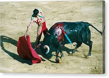 Bullfighter Canvas Print by Brent Easley