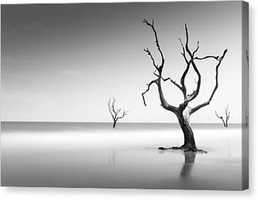 Boneyard Beach Iv Canvas Print