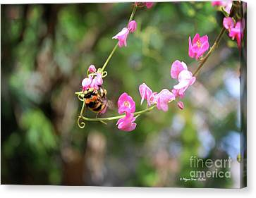 Canvas Print featuring the photograph Bumble Bee1 by Megan Dirsa-DuBois