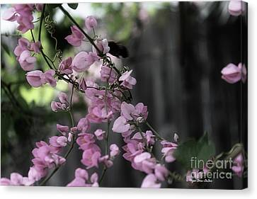 Canvas Print featuring the photograph Bumble by Megan Dirsa-DuBois