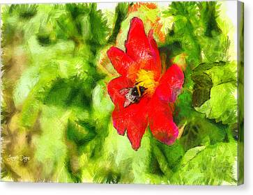 Bumblebee On The Flower - Pa Canvas Print by Leonardo Digenio
