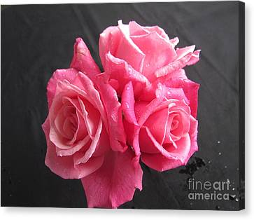 Bunch Of Roses Canvas Print by Joyce Woodhouse