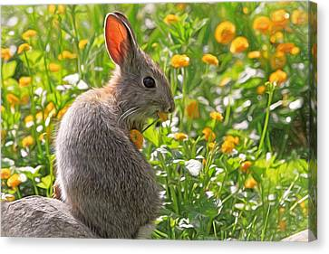 Bunny Brunch Canvas Print by Donna Kennedy