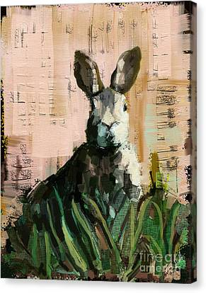 Bunny Canvas Print by Carrie Joy Byrnes