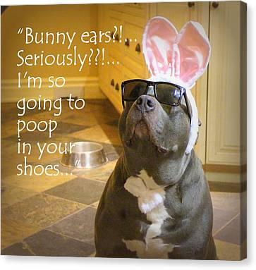 Bunny Ears? Canvas Print