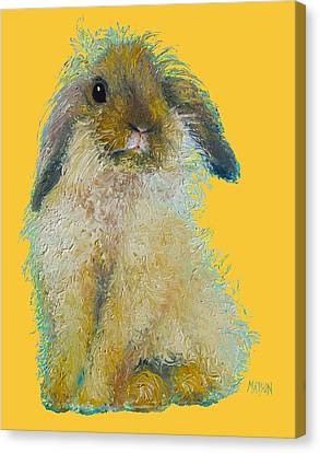 Bunny Painting On Yellow Background Canvas Print by Jan Matson