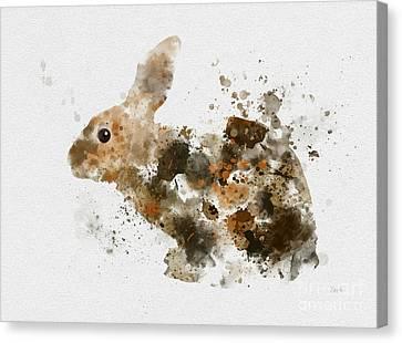 Rabbit Canvas Print - Bunny Rabbit by Rebecca Jenkins