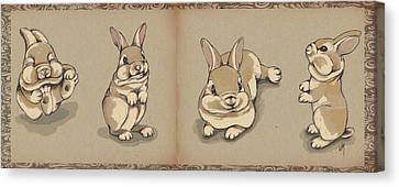 Bunny Sketch Canvas Print by Veronica Minozzi