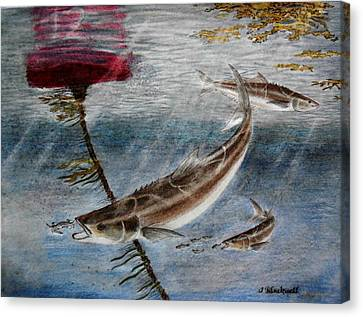 Buoy Marker 12 Canvas Print by Jason Blackwell