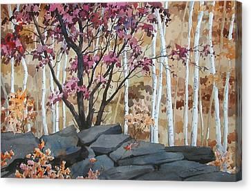 Burgundy On The Rocks Canvas Print by Faye Ziegler