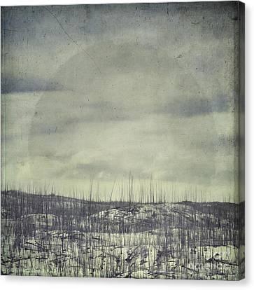 Burned Ground Canvas Print