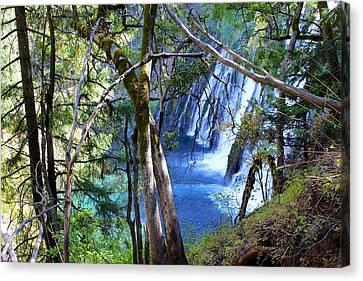 Burney Falls Trailside II Canvas Print