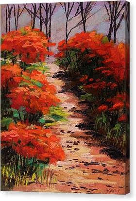 Burning Bush Along The Lane Canvas Print by John Williams