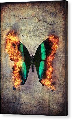 Combusting Canvas Print - Burning Butterfly by Garry Gay