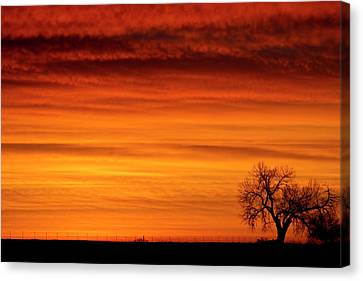 Burning Country Sky Canvas Print by James BO  Insogna