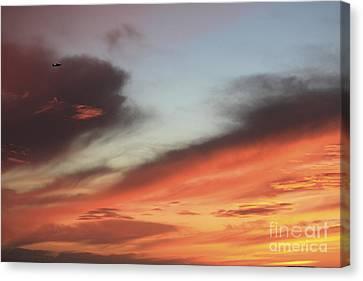 Burning Flight Canvas Print