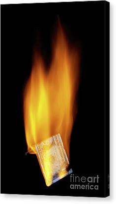 Burning Money Canvas Print by Roland Magnusson