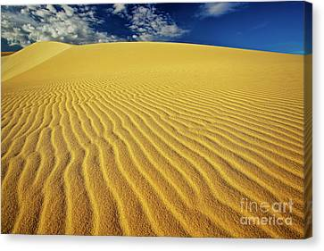 Burning Up At The White Sand Dunes - Mui Ne, Vietnam, Southeast Asia Canvas Print by Sam Antonio Photography