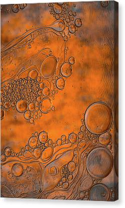 Burnt Bubble Fire Plate Canvas Print by Bruce Pritchett