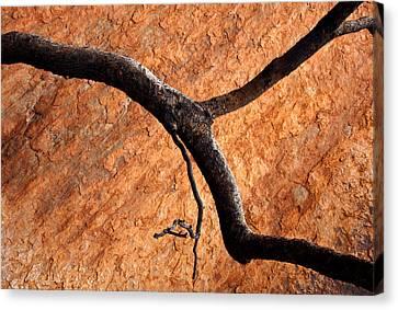 Wildfires Canvas Print - Burnt Orange by Mike  Dawson