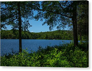 Burr Pond Canvas Print