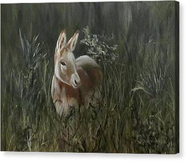Canvas Print featuring the painting Burro In The Wild by Roseann Gilmore