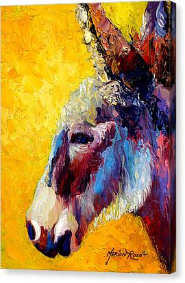 Western Canvas Print - Burro Study II by Marion Rose