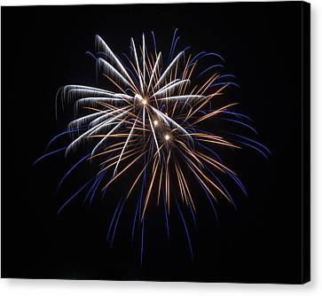 Canvas Print featuring the photograph Burst Of Elegance by Bill Pevlor
