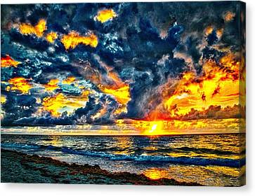 Bursting Forth Canvas Print by Dennis Baswell