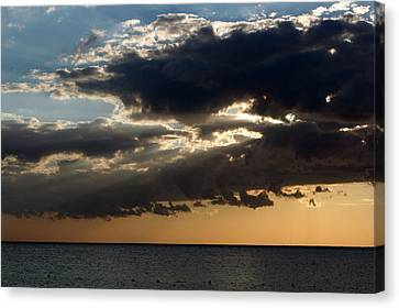 Bursting Through Canvas Print by Laurie Search