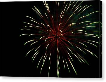 Pyrotechnic Canvas Print - Bursting With Love by Marnie Patchett