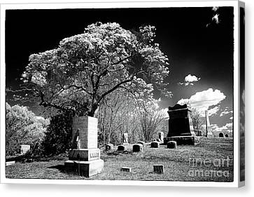 Bury Me Under A Tree Canvas Print by John Rizzuto