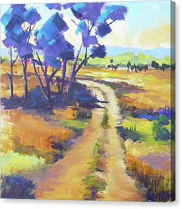 Bush Track In The Kimberley, Western Australia Canvas Print