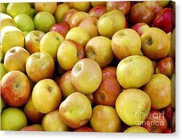 Bushel Of Apples Canvas Print by Micah May