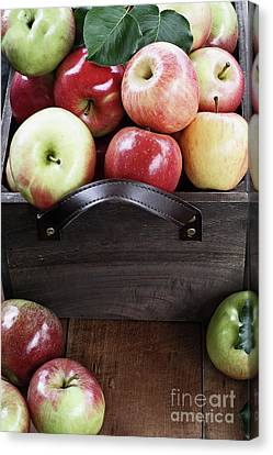 Canvas Print featuring the photograph Bushel Of Apples  by Stephanie Frey