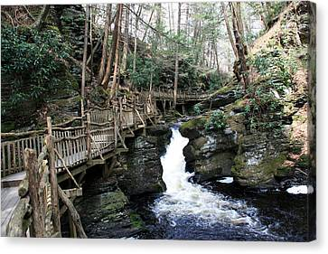 Bushkill Falls Boardwalk 2 Canvas Print