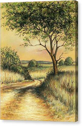 Canvas Print featuring the drawing Bushveld by Heidi Kriel