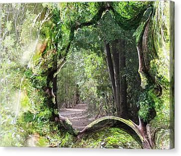 Bushwalk Canvas Print