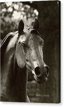 Bust Of Man O War 3 - Kentucky Horse Park Canvas Print by Thia Stover