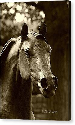 Bust Of Man O War - Kentucky Horse Park Canvas Print by Thia Stover