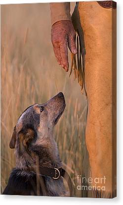 Buster And Dawg Canvas Print by Carol Walker