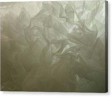 Canvas Print - Bustle I by Anna Villarreal Garbis