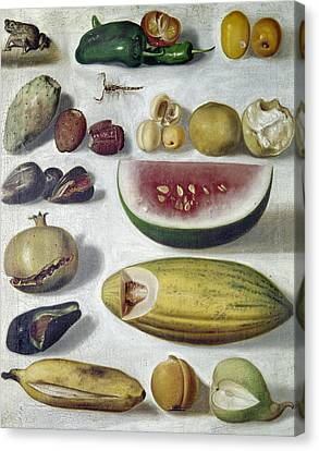 Bustos: Still Life, 1874 Canvas Print by Granger