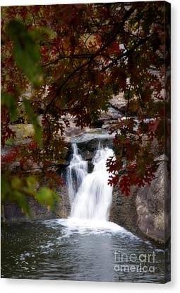 Butcher Falls In Autumn Colors Canvas Print by Fred Lassmann