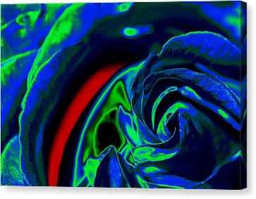 Butler Rose IIi Canvas Print