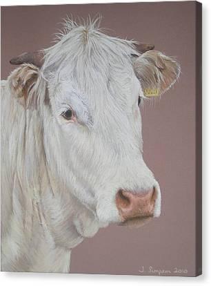 Buttercup Canvas Print by Joanne Simpson