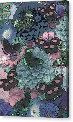 Butterflies Canvas Print by JQ Licensing